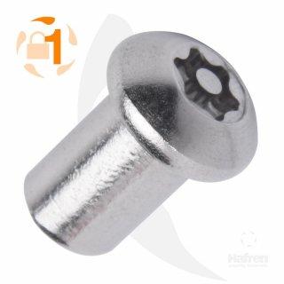 Hülsenmutter mit Flachrundkopf A2  / M 6 x  12 // 10 Stück