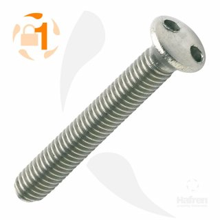 Metrische Schraube Zweiloch Linsenkopf A2  / M 6 x  50 // 100 Stück