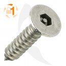Blechschraube Pin Hexagon SK A2  / 3,5 x  19 // 100...