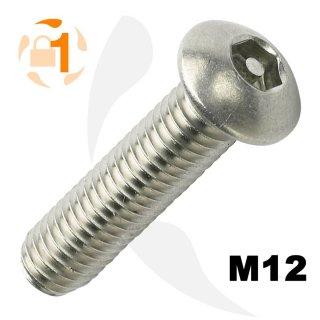 Art. 9111 A2 M 12X100 ISK-PIN 8